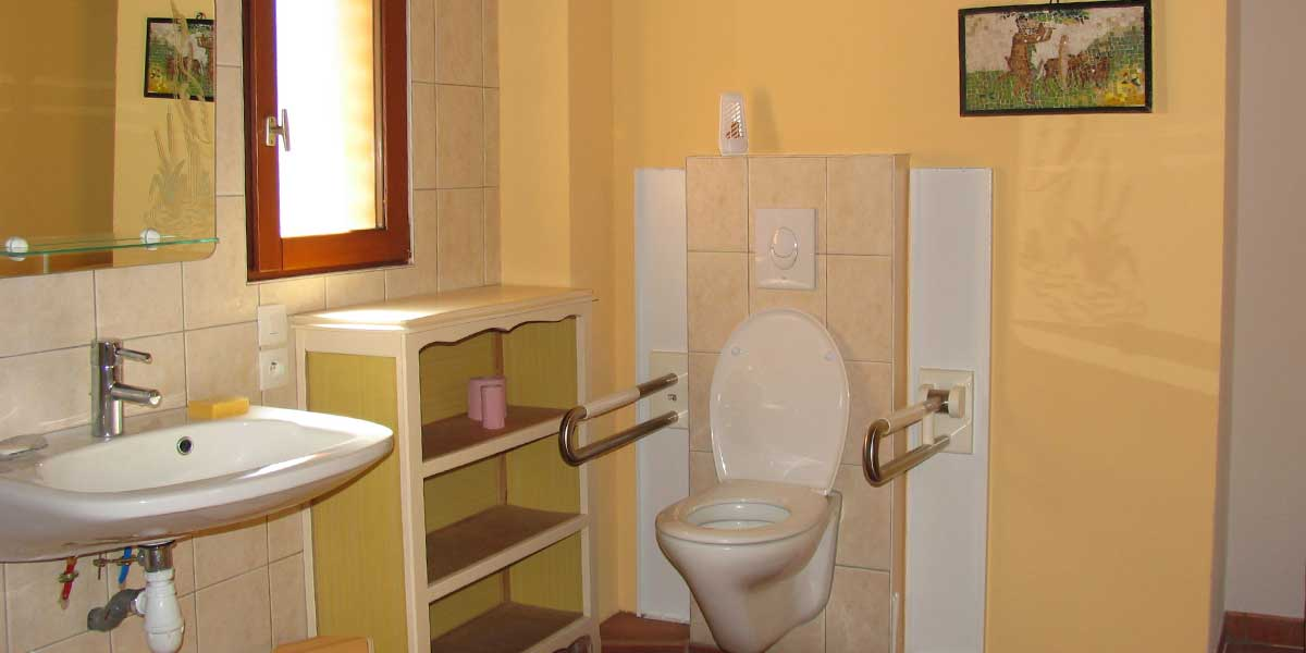 Accessible washbasin and toilet